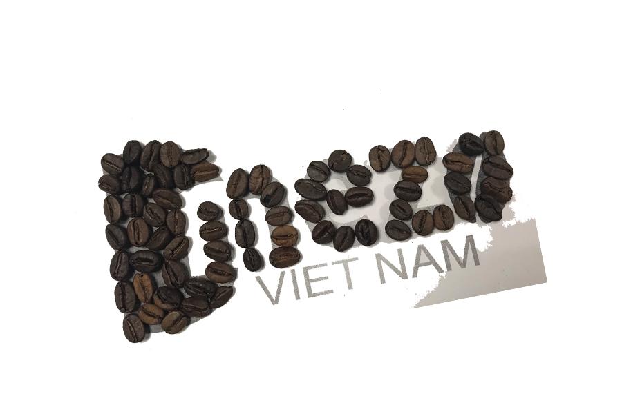 Dmezo Viet Nam